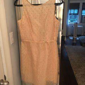 Ladies dress tag size 12 fits like 8